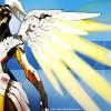 WP-Mercy