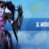 WP-Widowmaker